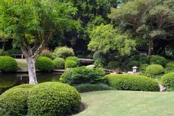 The Japanese Garden In Brisbane