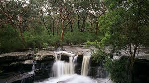 national park in sydney