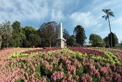 The Brisbane Botanic Gardens