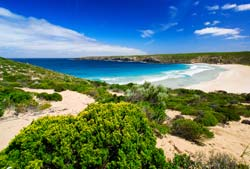 On Kangaroo Island, Let Yourself Go