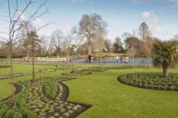 Why You Should Visit Sydney Royal Botanical Gardens