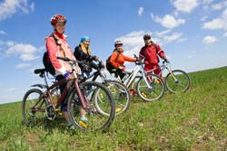Going On Bicycle Tours In Brisbane