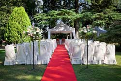 Getting Married At Sydney Royal Botanical Gardens
