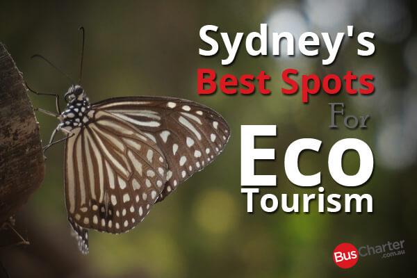 Sydney's Best Spots For Eco Tourism