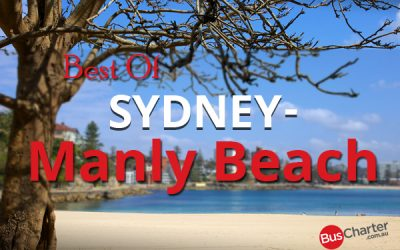 Best Of Sydney: Manly Beach