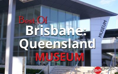 Best Of Brisbane: Queensland Museum